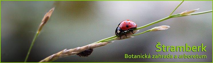 Stramberk - botanicka zahrada