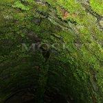 Mýtnice, Mauthaus - studna
