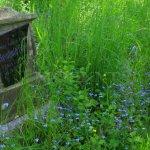 Skokovský hřbitov - připomínka obyvatel zaniklé vesnice