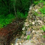 hrana kamenného soklu