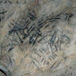 Nejstarší kresba v Býčí skále