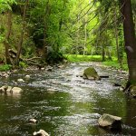 Řeka Doubrava