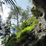 Pohled ze dna kaňonu