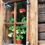 Okno chalupy