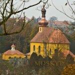 Pohled z Věžky na hřbitov a kostel sv. Máří Magdaleny