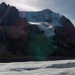 Ledovec Atabasca