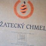 Ve Chmelařském muzeu - Žatecký chmel