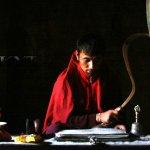 Markha valley trek – osamělý mnich